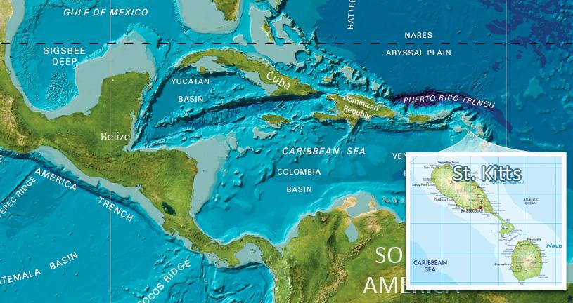 гражданство Сент-Киттс и Невис